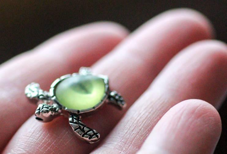 A silver turtle trinket